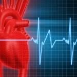 hjärta-kärl