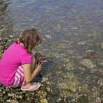 child_25795_Rosemary Ratcliff