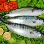 fish_suat eman