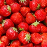 strawberries_Tina Phillips