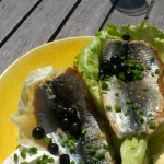 sill herring lunch