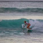 surf maycocks