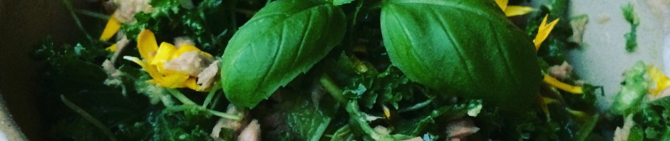 tonfisksallad basilika