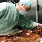 Ismannen Ötzi gillade fett (och så lite om energiprocent)