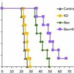 Studie: ketogen kost mot cancer